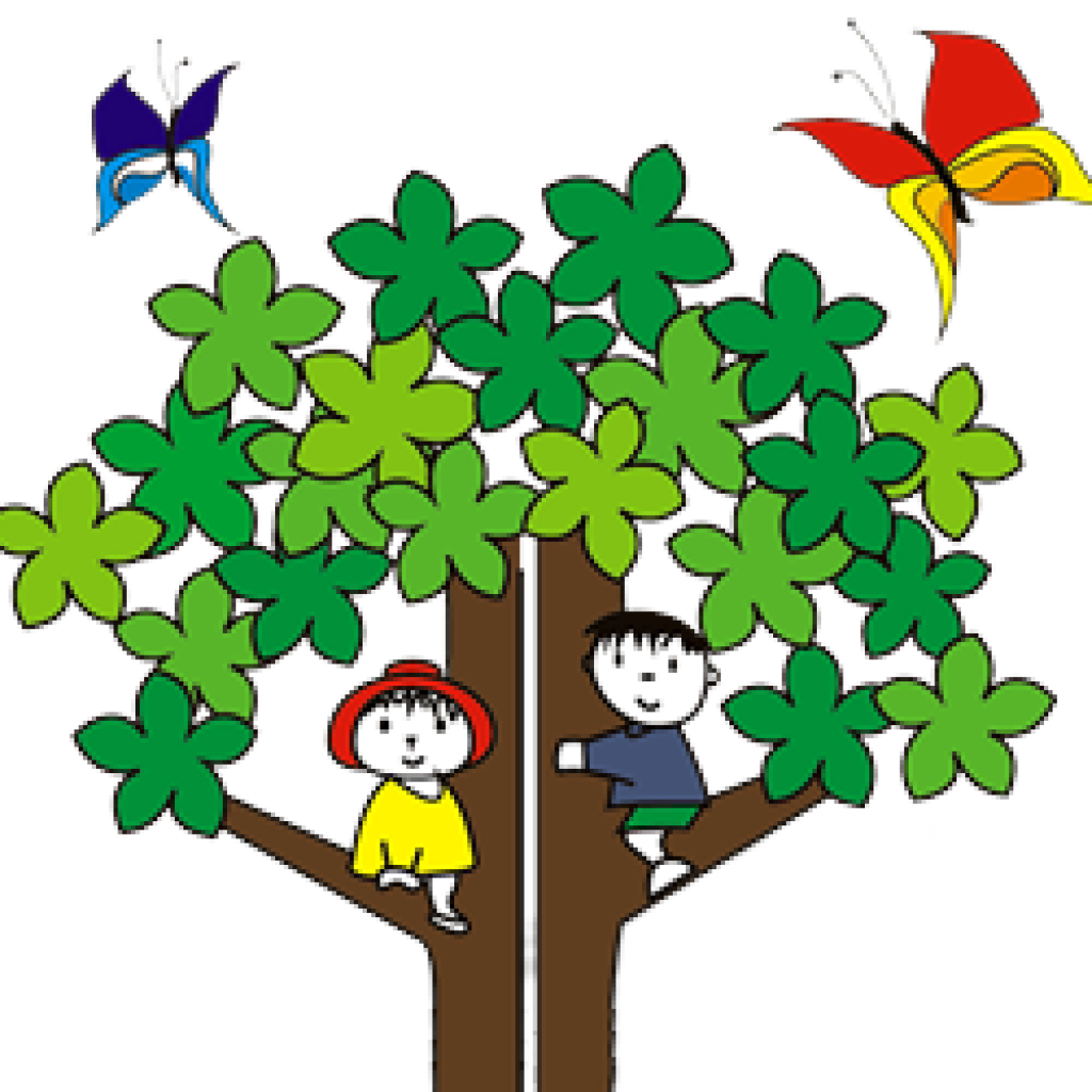 Birches Tree